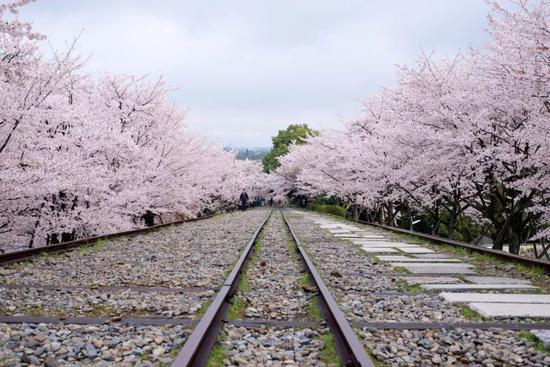 ©Tetsuji Sakakibara/Flickr