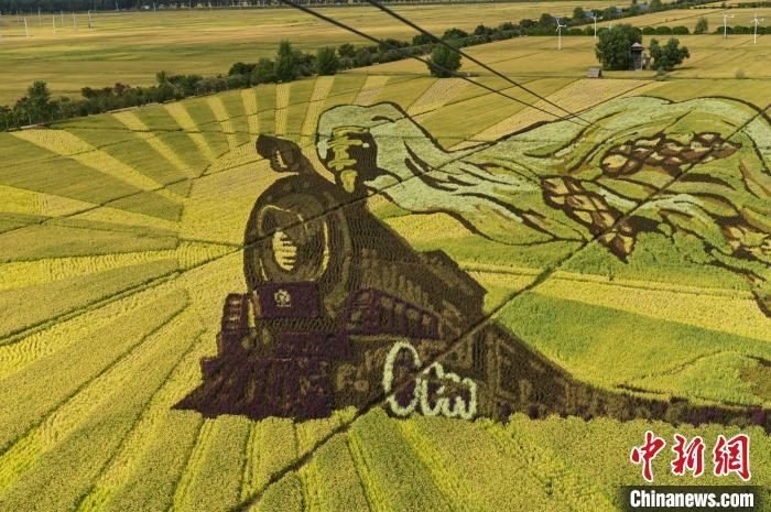 巨幅稻田画。 于海洋 摄